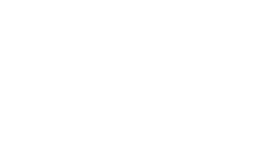 Battred Women's Justice Project